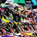 写真: 全日本モトクロス選手権 R6.SUGO 9