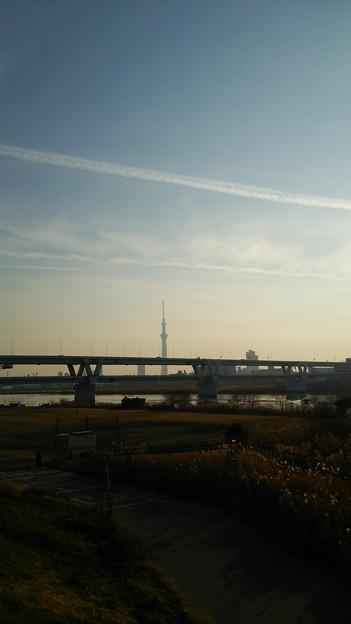 Photos: スカイツリーや江東区の夜景ほか12月28日に都心方面へ出かけた画像その3