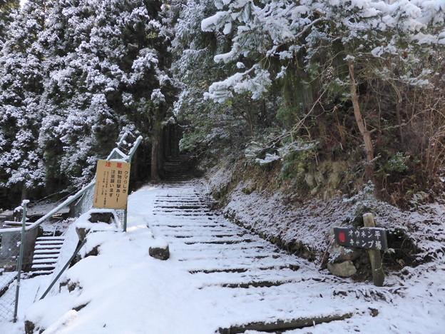 オウネン平キャンプ場への登山口