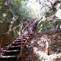 Photos: 滝見台への鉄階段