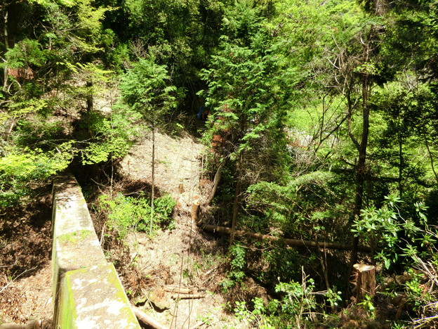 高雄山へ続く索道