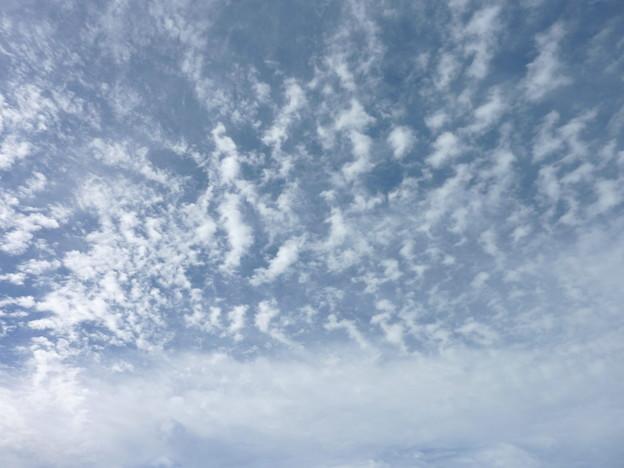 Photos: 天気いい!