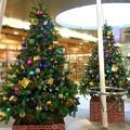 Photos: 2014*上野駅構内のクリスマスツリー