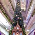 2014*表参道ヒルズのクリスマス★3