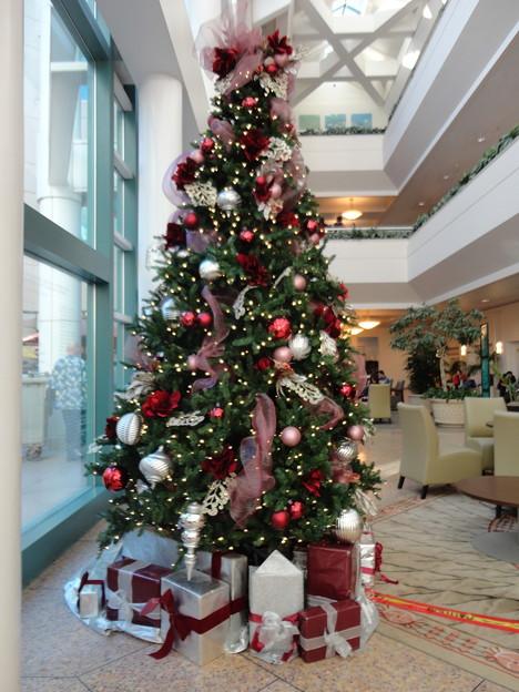 ChristmasTree@Hospital-Dec23-2014-1