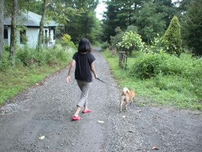 朝の散歩に