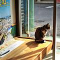 写真: 手招き猫・・・尾道へ