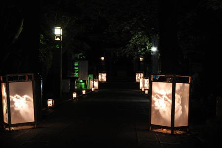 江ノ島灯籠2010 02