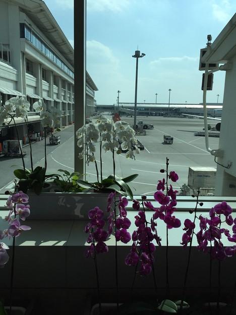 写真: 那覇空港