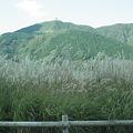 Photos: 仙石原すすき野