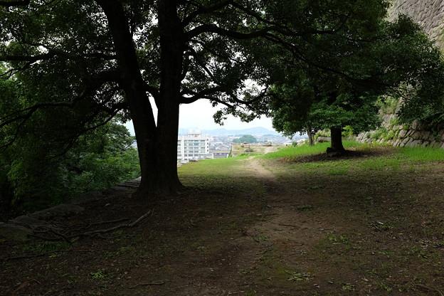 丸亀城の小道と丸亀市街