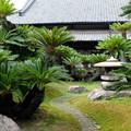 Photos: 披雲閣庭園