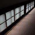 Photos: 披雲閣の窓ガラス