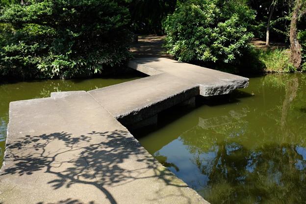 小室山公園の八つ橋