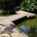 Photos: 小室山公園の八つ橋