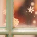 Photos: 窓辺に降る雪  ~Soft feeling~