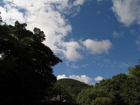 20101010 甲山森林公園008