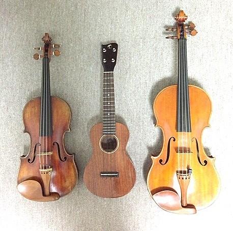 楽器を比較してみました