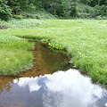 池に映る雲
