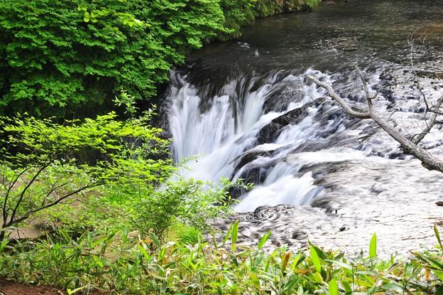 湯の川 3