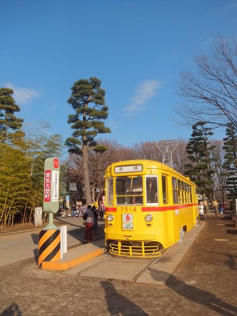 Photos: DSCF3063.JPG