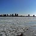 写真: デトロイト川のほとりで